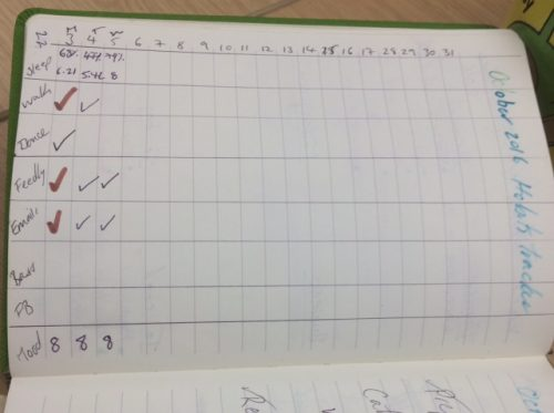 uncompleted habit log in a notebook inkdrops.co.uk