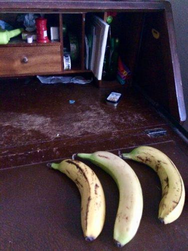 three bananas - inkdrops.co.uk