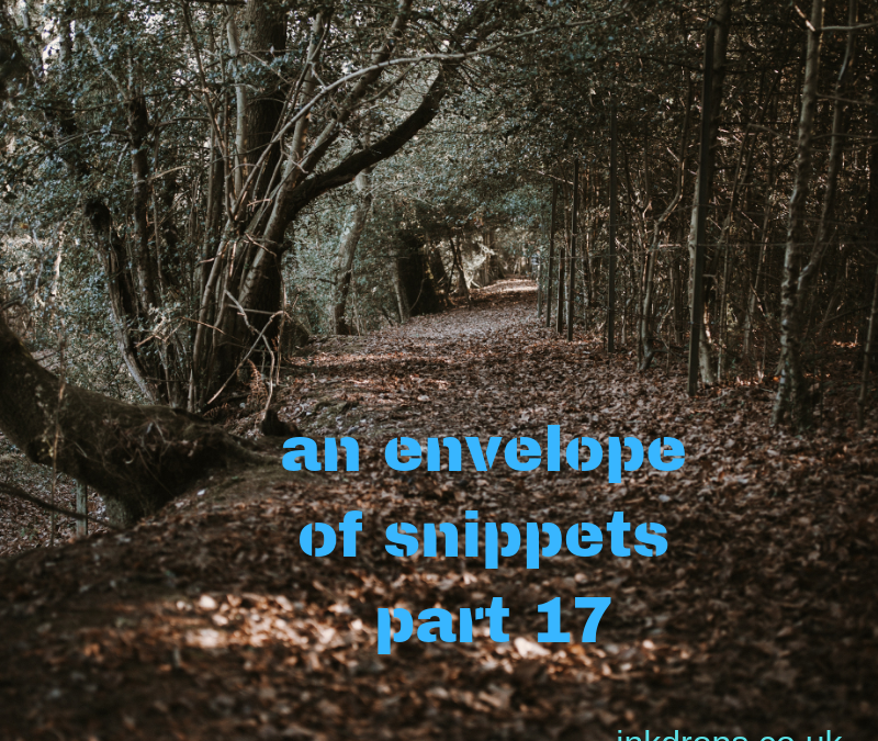 An envelope of snippets part 17
