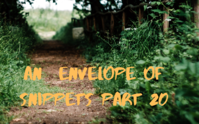 An Envelope of Snippets part 20