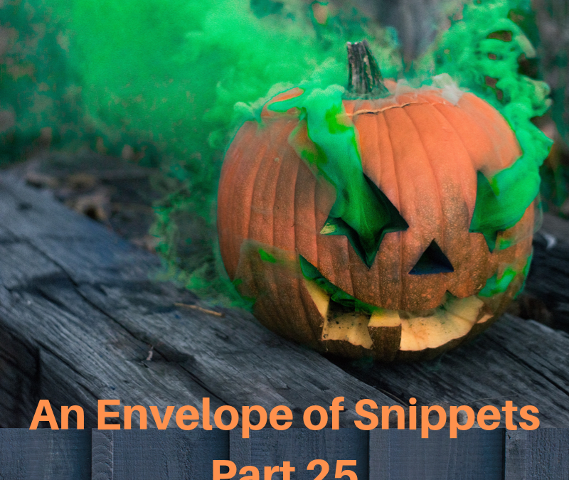 An Envelope of Snippets Part 25