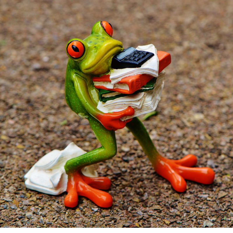 Frog  - ready to relax? inkdrops.co.uk