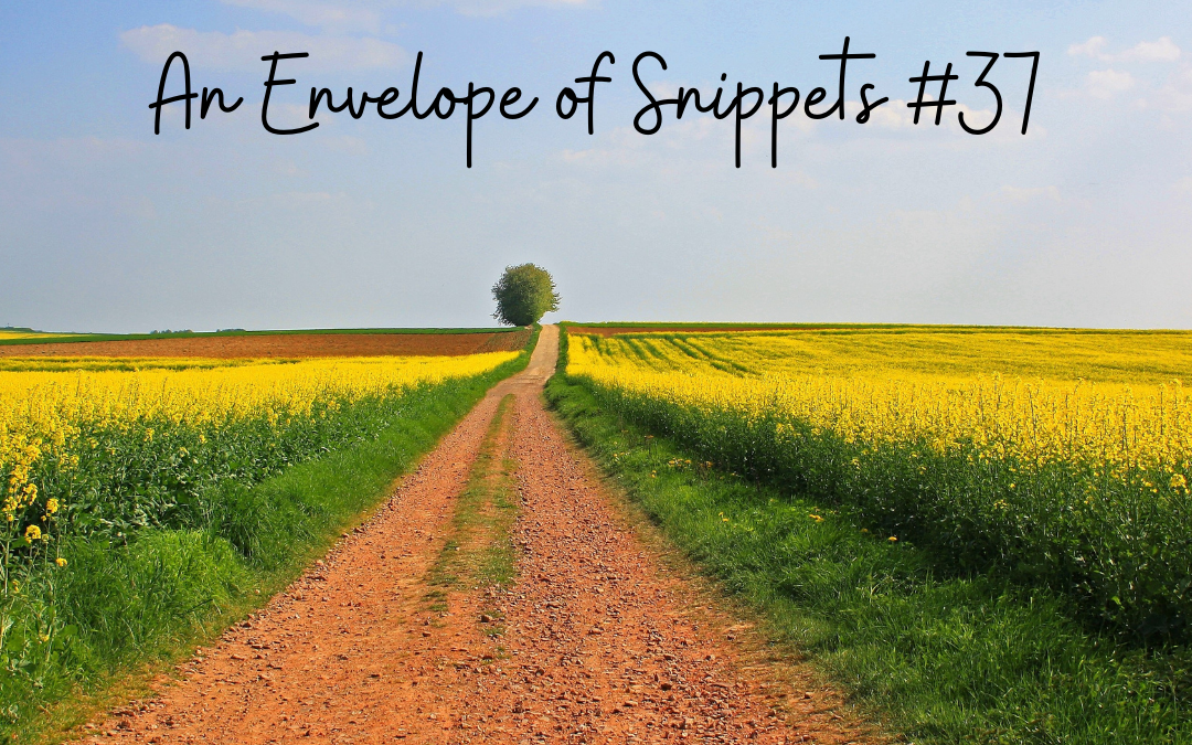An Envelope of Snippets #37
